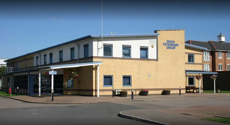 Wood Veterinary Group Quedgeley
