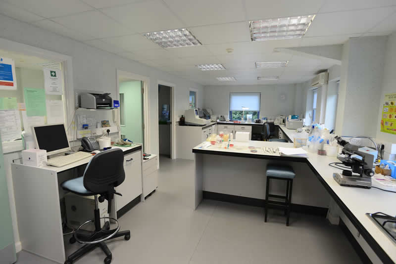 Laboratory Wood Vets Quedgeley Gloucestershire
