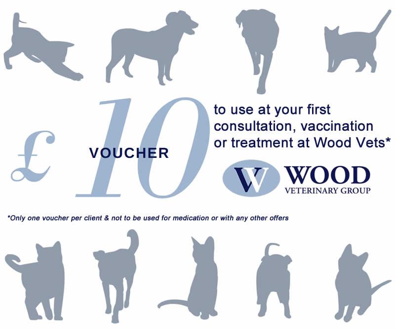 voucher wood vets